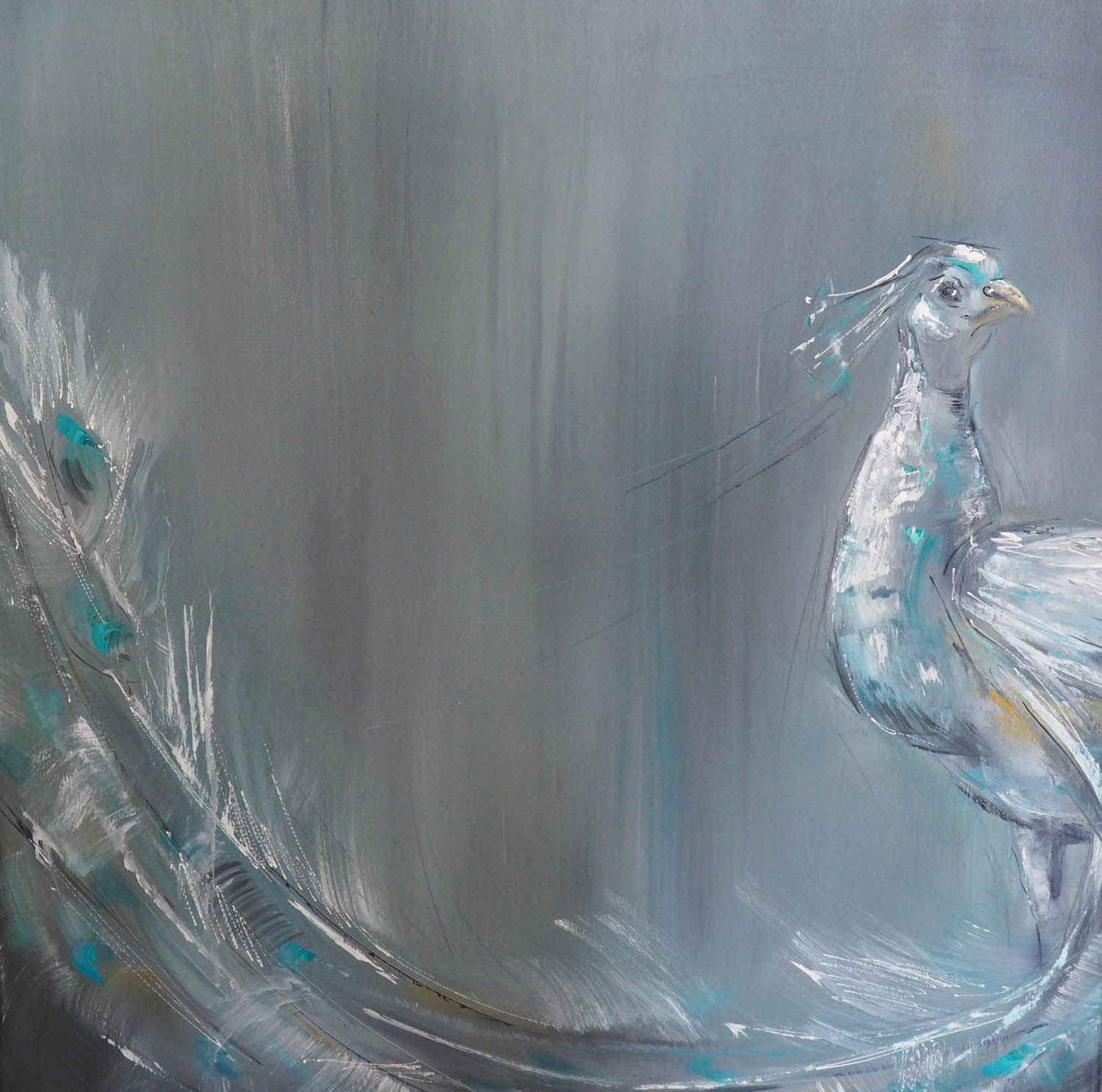 white-peacock-II-60x60_.jpg